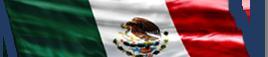 Businesses in México